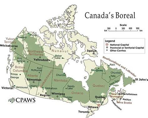 Forest Ontario Canada Map   The boreal forest stretches